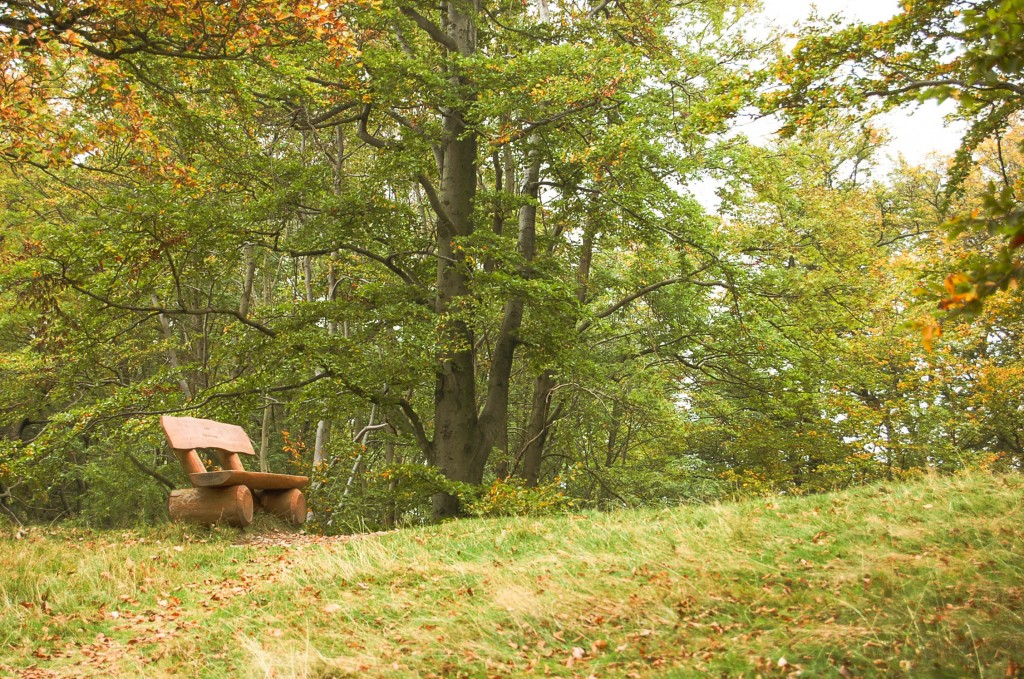 Herbst Braunlage